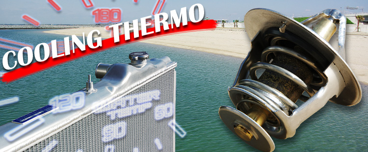 COOLING THERMO